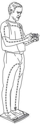 tư thế đo đúng của căn sước khỏe đa năng beurer BF100
